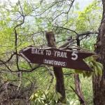 Trail 5A Margalla Hills